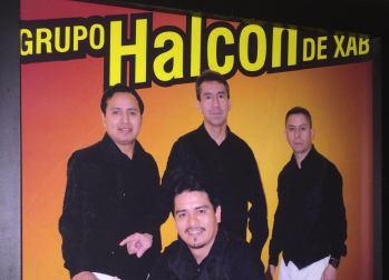 Grupo Halcon image